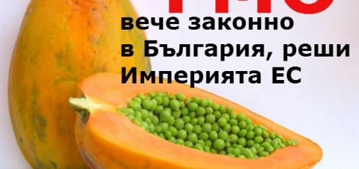 GMO-pape6