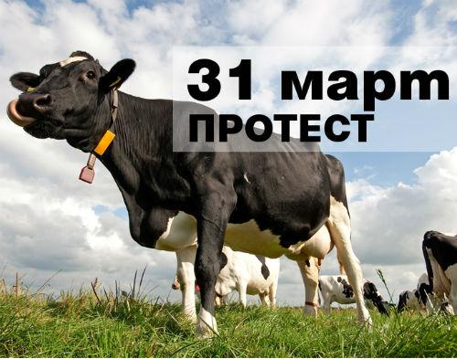 kravi_protest_na_31_mart
